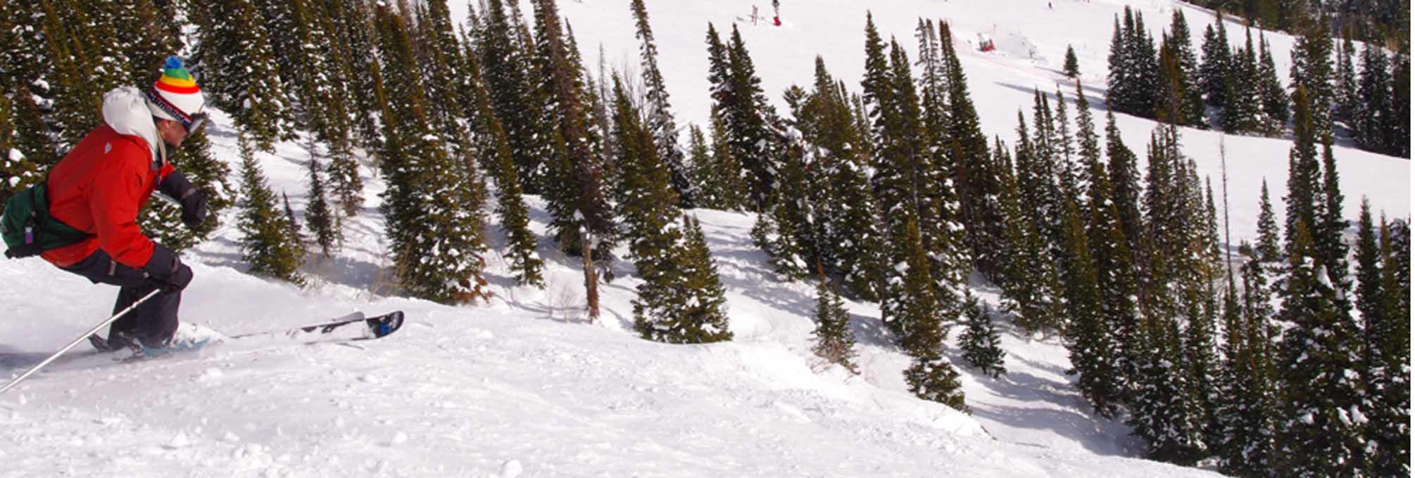 JH VR ski